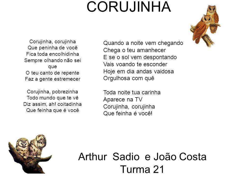Arthur Sadio e João Costa Turma 21