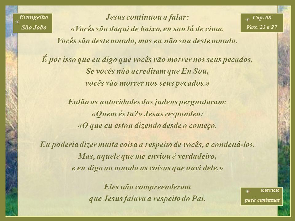 Jesus continuou a falar: «Vocês são daqui de baixo, eu sou lá de cima.