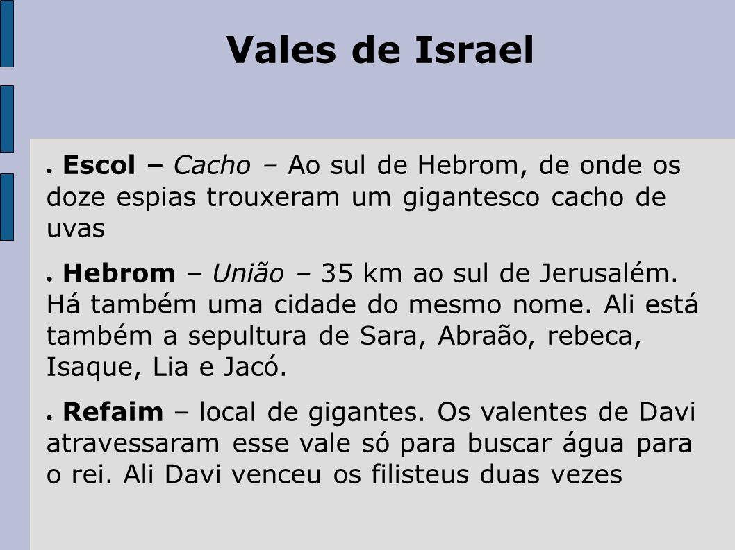 Vales de IsraelEscol – Cacho – Ao sul de Hebrom, de onde os doze espias trouxeram um gigantesco cacho de uvas.