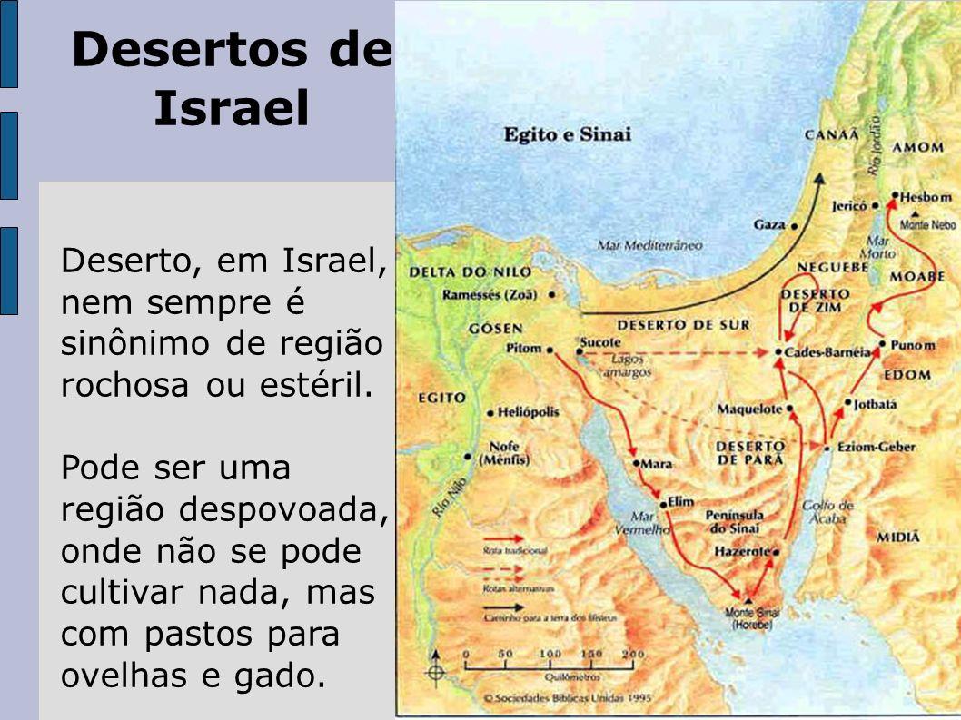 Desertos de IsraelDeserto, em Israel, nem sempre é sinônimo de região rochosa ou estéril.