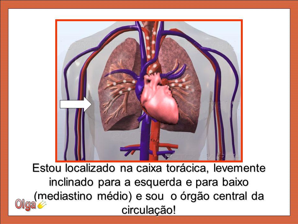 (mediastino médio) e sou o órgão central da circulação!