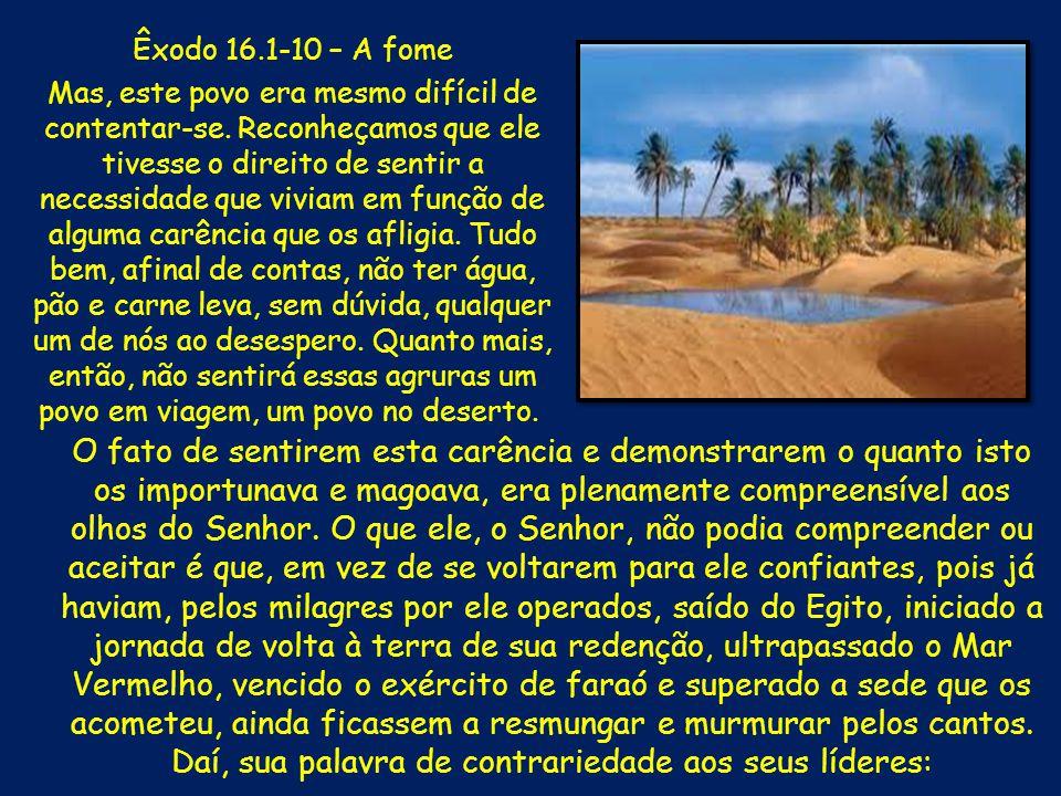Êxodo 16.1-10 – A fome