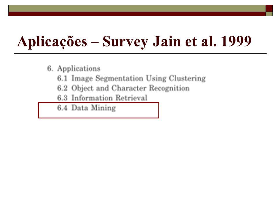 Aplicações – Survey Jain et al. 1999