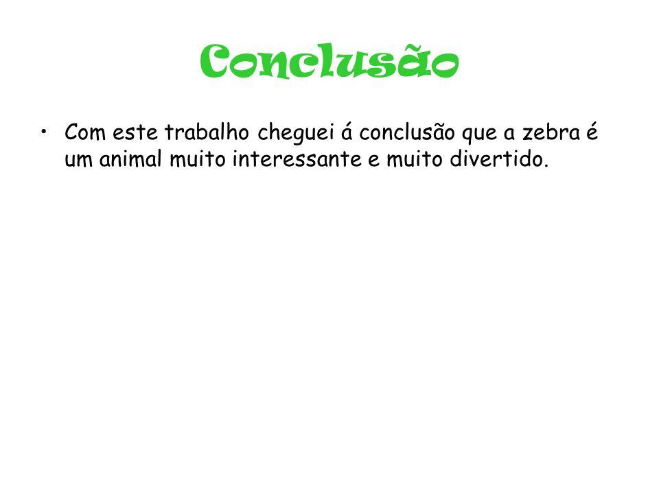 Conclusão Com este trabalho cheguei á conclusão que a zebra é um animal muito interessante e muito divertido.