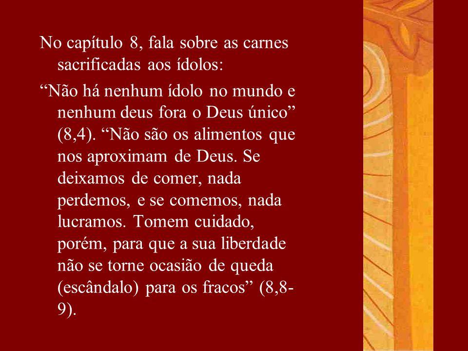 No capítulo 8, fala sobre as carnes sacrificadas aos ídolos:
