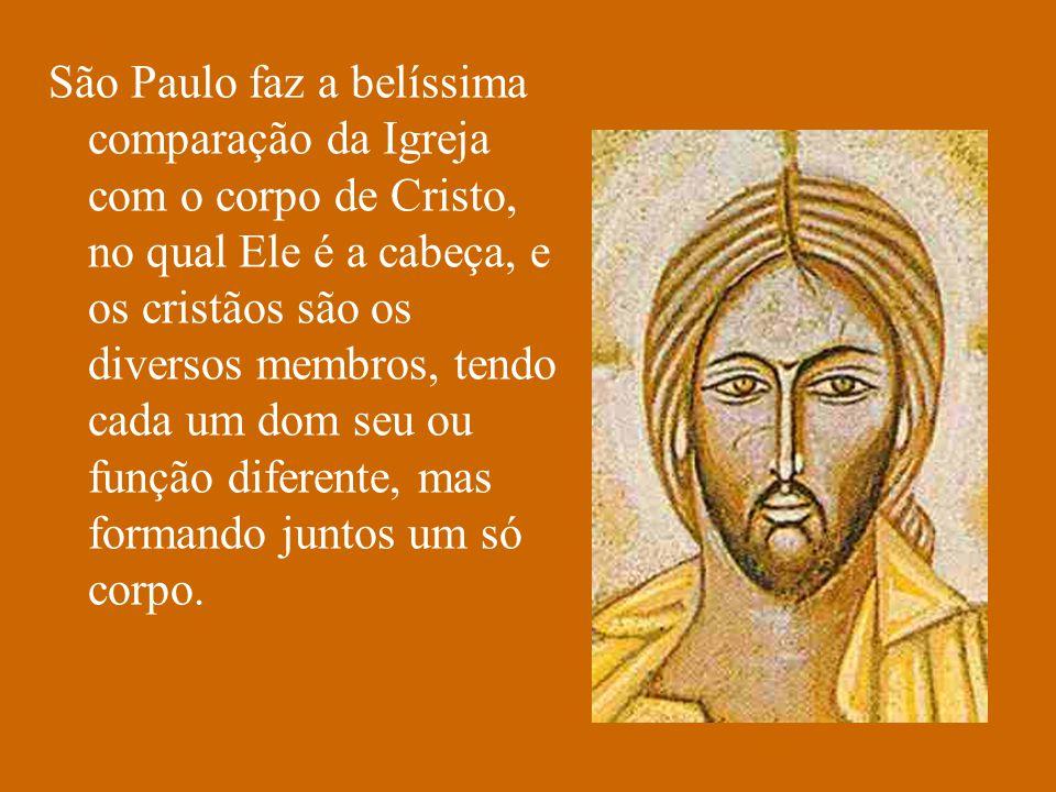 São Paulo faz a belíssima comparação da Igreja com o corpo de Cristo, no qual Ele é a cabeça, e os cristãos são os diversos membros, tendo cada um dom seu ou função diferente, mas formando juntos um só corpo.