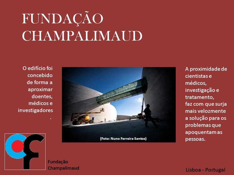 (Foto: Nuno Ferreira Santos)