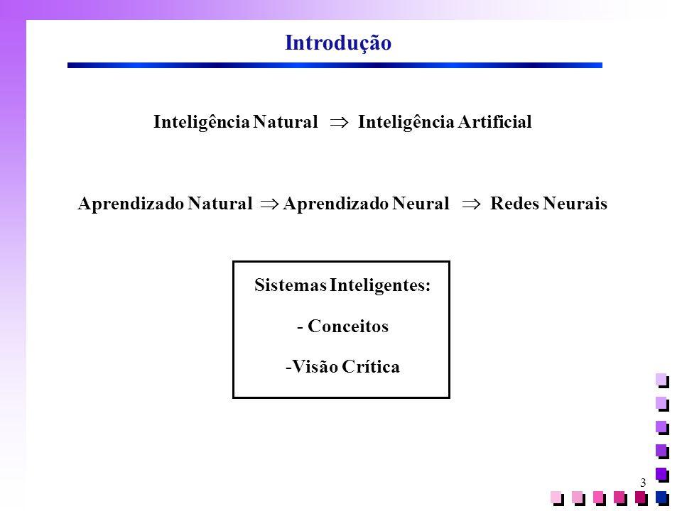 Introdução Inteligência Natural  Inteligência Artificial