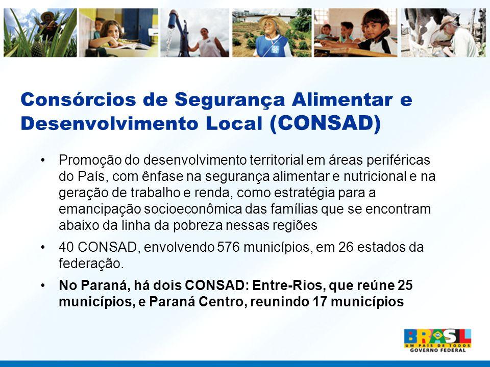Consórcios de Segurança Alimentar e Desenvolvimento Local (CONSAD)