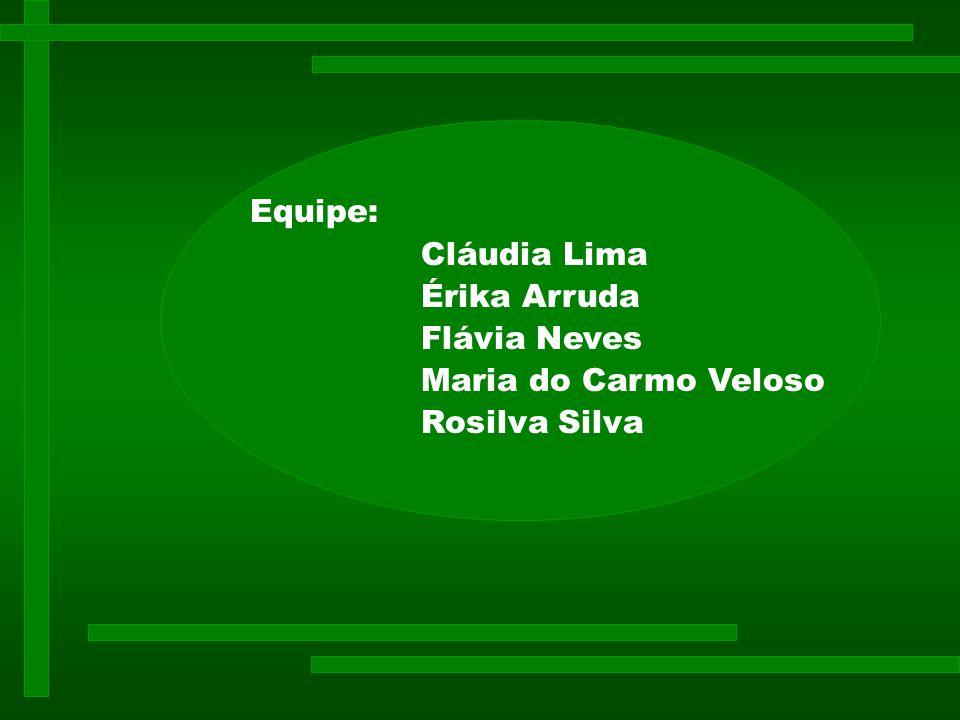 Equipe: Cláudia Lima Érika Arruda Flávia Neves Maria do Carmo Veloso Rosilva Silva