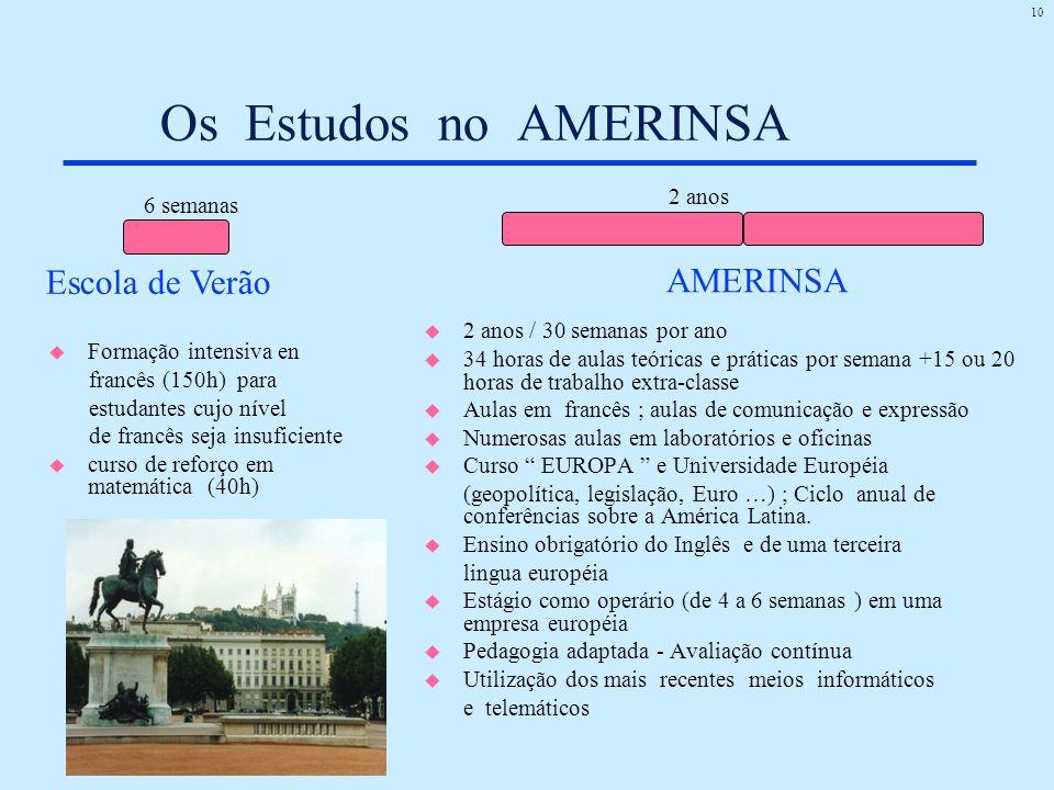 Os Estudos no AMERINSA Escola de Verão AMERINSA 2 anos 6 semanas