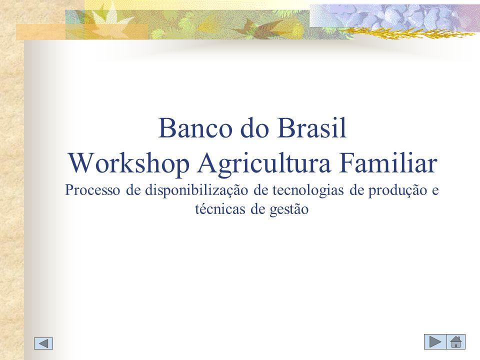 Banco do Brasil Workshop Agricultura Familiar Processo de disponibilização de tecnologias de produção e técnicas de gestão