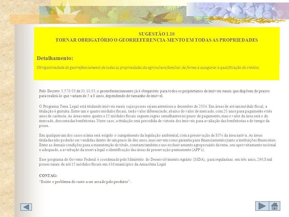SUGESTÃO 1.10 TORNAR OBRIGATÓRIO O GEORREFERENCIA-MENTO EM TODAS AS PROPRIEDADES