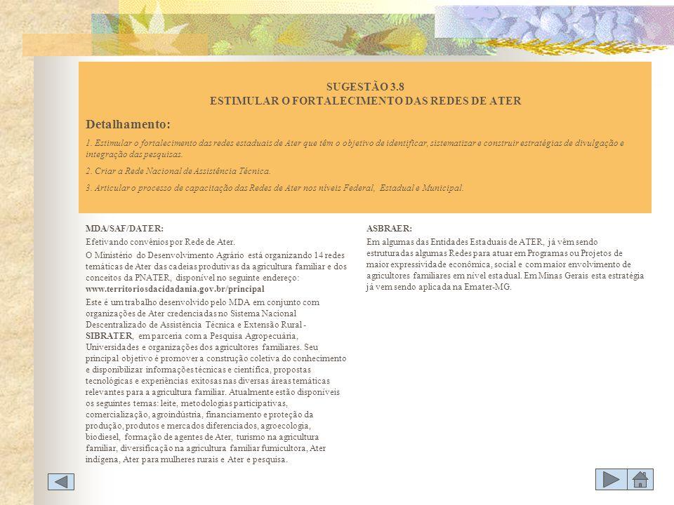 SUGESTÃO 3.8 ESTIMULAR O FORTALECIMENTO DAS REDES DE ATER