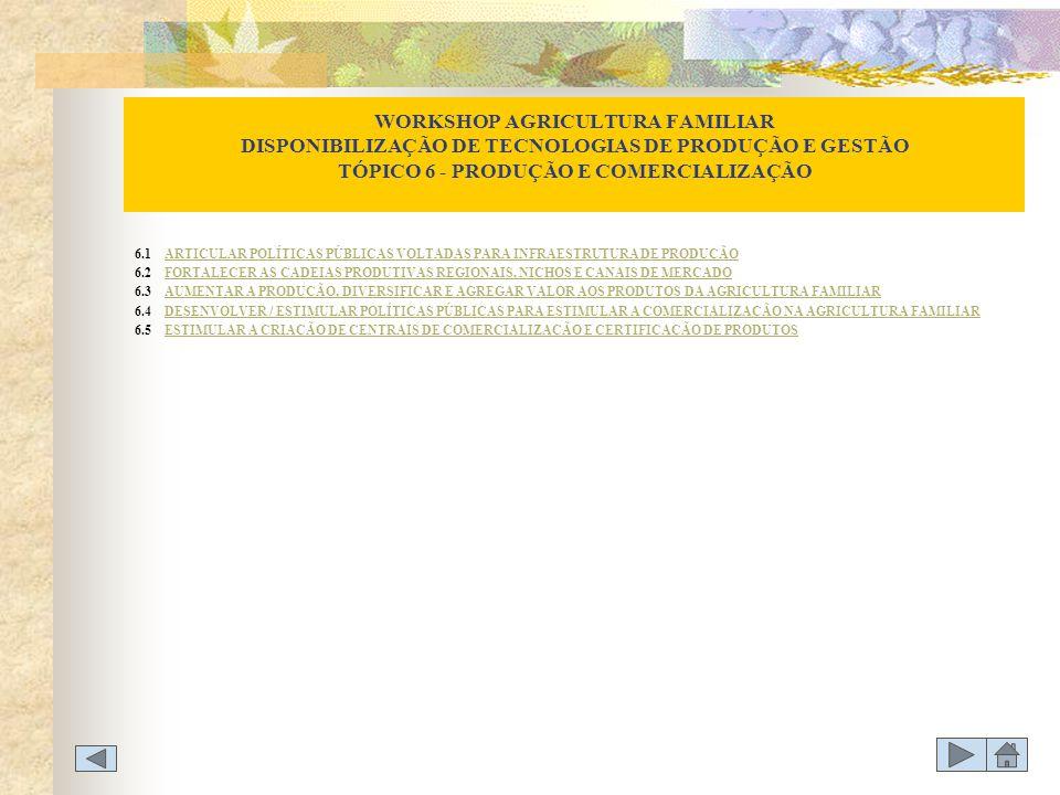 WORKSHOP AGRICULTURA FAMILIAR DISPONIBILIZAÇÃO DE TECNOLOGIAS DE PRODUÇÃO E GESTÃO TÓPICO 6 - PRODUÇÃO E COMERCIALIZAÇÃO