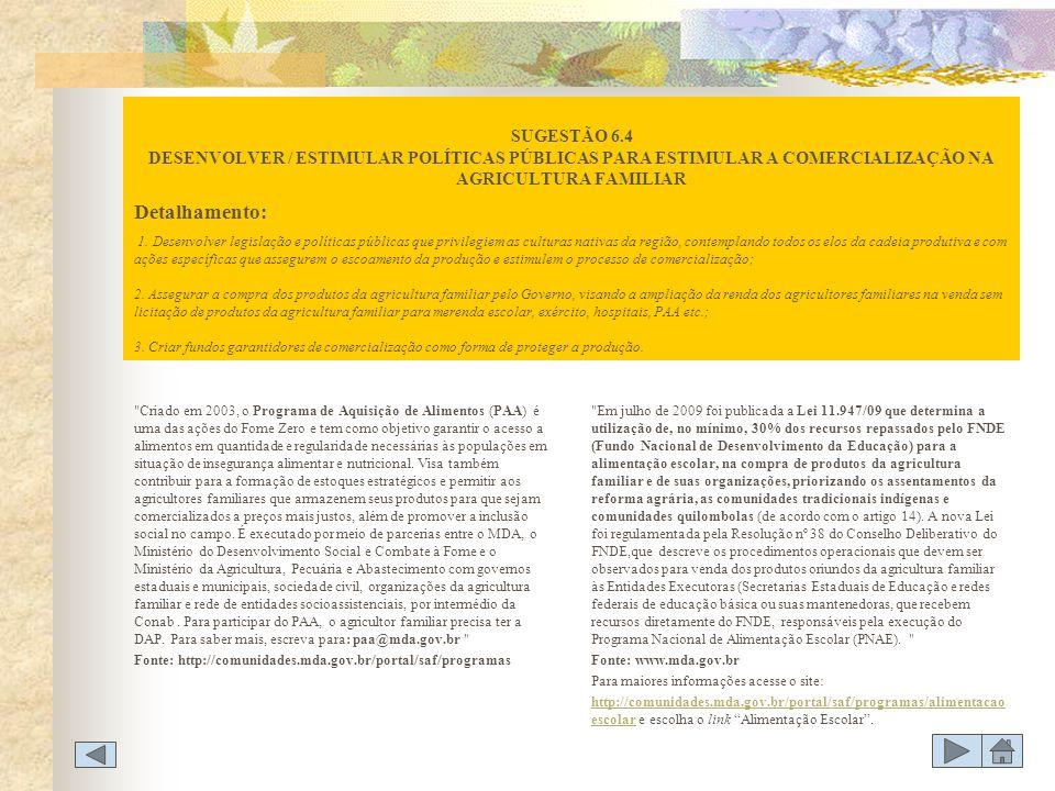 SUGESTÃO 6.4 DESENVOLVER / ESTIMULAR POLÍTICAS PÚBLICAS PARA ESTIMULAR A COMERCIALIZAÇÃO NA AGRICULTURA FAMILIAR