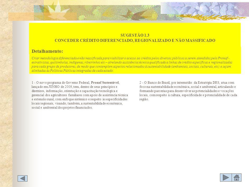 SUGESTÃO 1.3 CONCEDER CRÉDITO DIFERENCIADO, REGIONALIZADO E NÃO MASSIFICADO