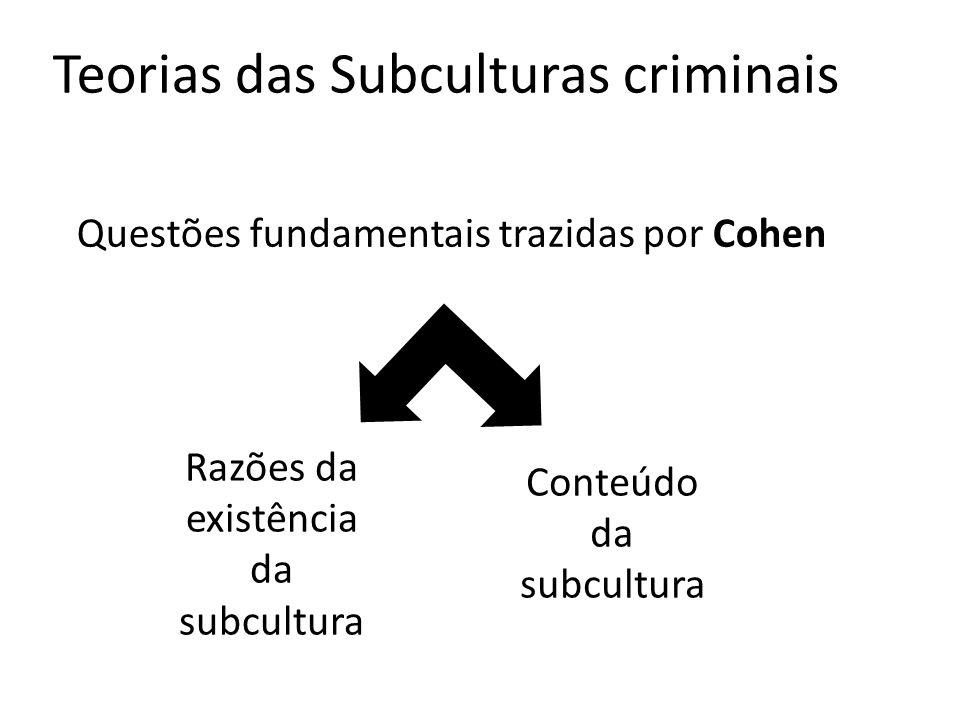 Teorias das Subculturas criminais