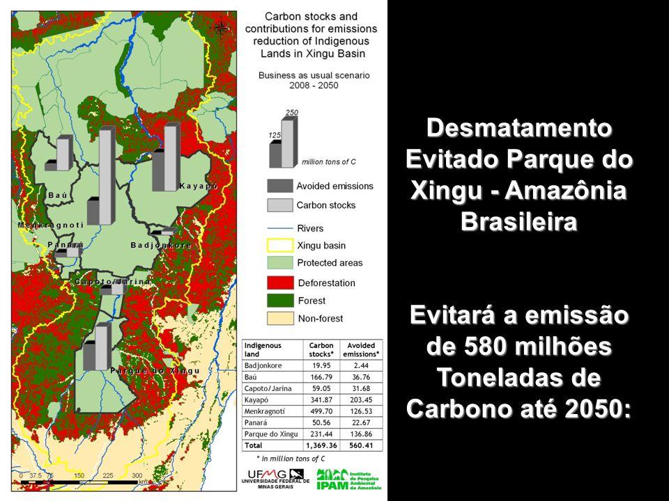 Desmatamento Evitado Parque do Xingu - Amazônia Brasileira