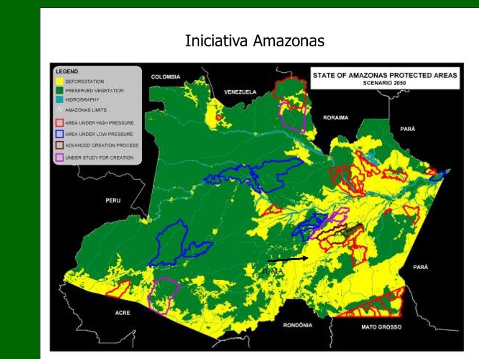 Iniciativa Amazonas JUMA 18