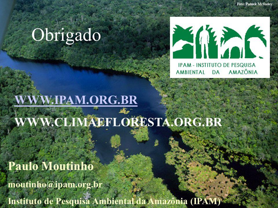 Obrigado WWW.IPAM.ORG.BR WWW.CLIMAEFLORESTA.ORG.BR Paulo Moutinho