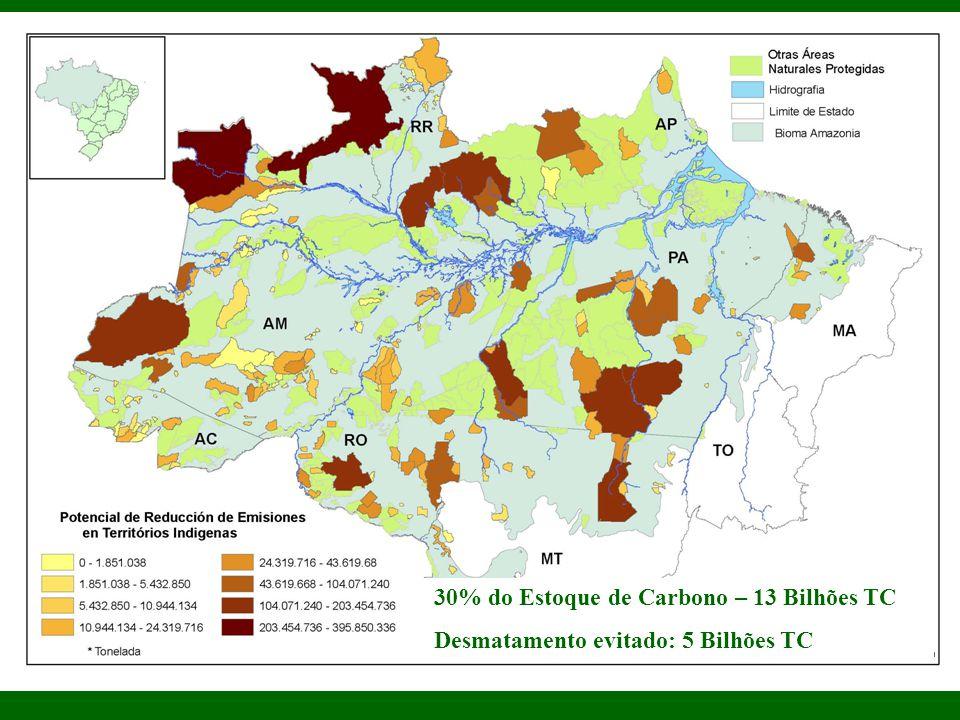 30% do Estoque de Carbono – 13 Bilhões TC
