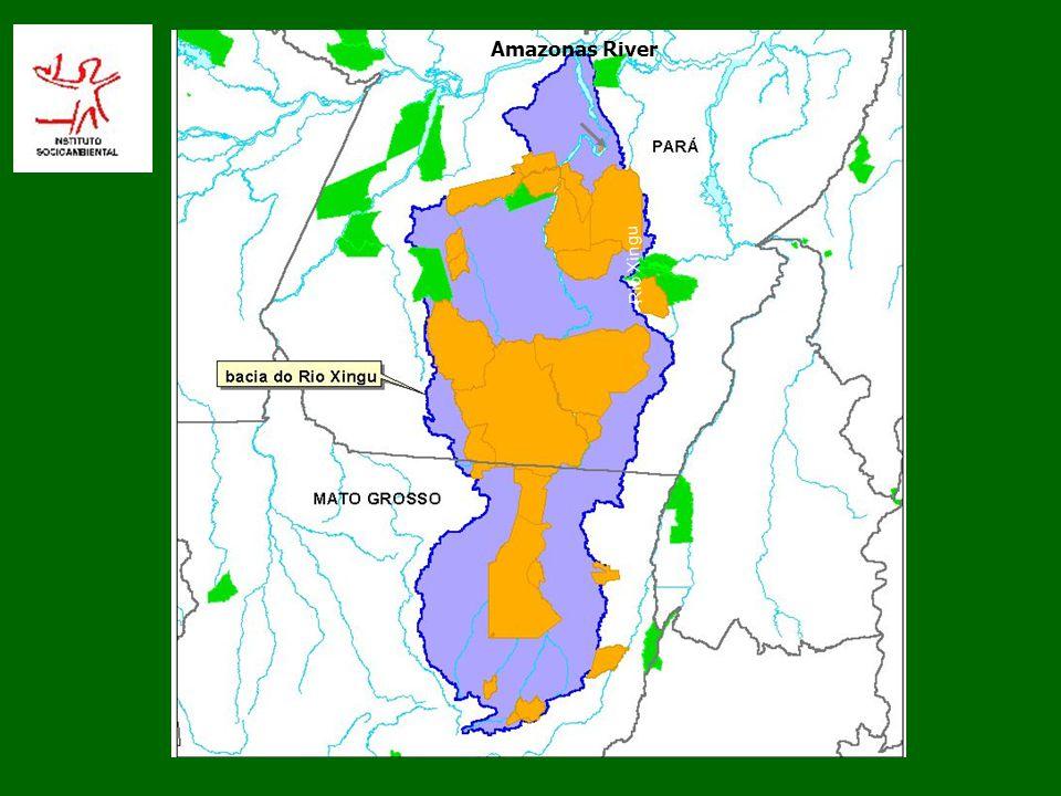 Amazonas River Rio Xingu 9