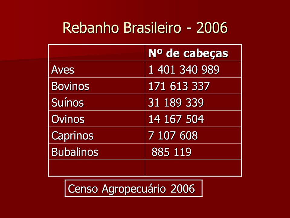 Rebanho Brasileiro - 2006 Nº de cabeças Aves 1 401 340 989 Bovinos