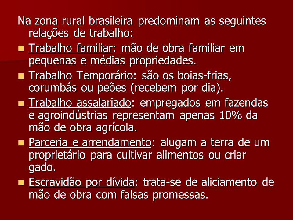 Na zona rural brasileira predominam as seguintes relações de trabalho: