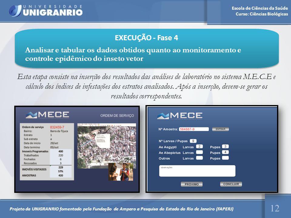 EXECUÇÃO - Fase 4 Analisar e tabular os dados obtidos quanto ao monitoramento e controle epidêmico do inseto vetor.