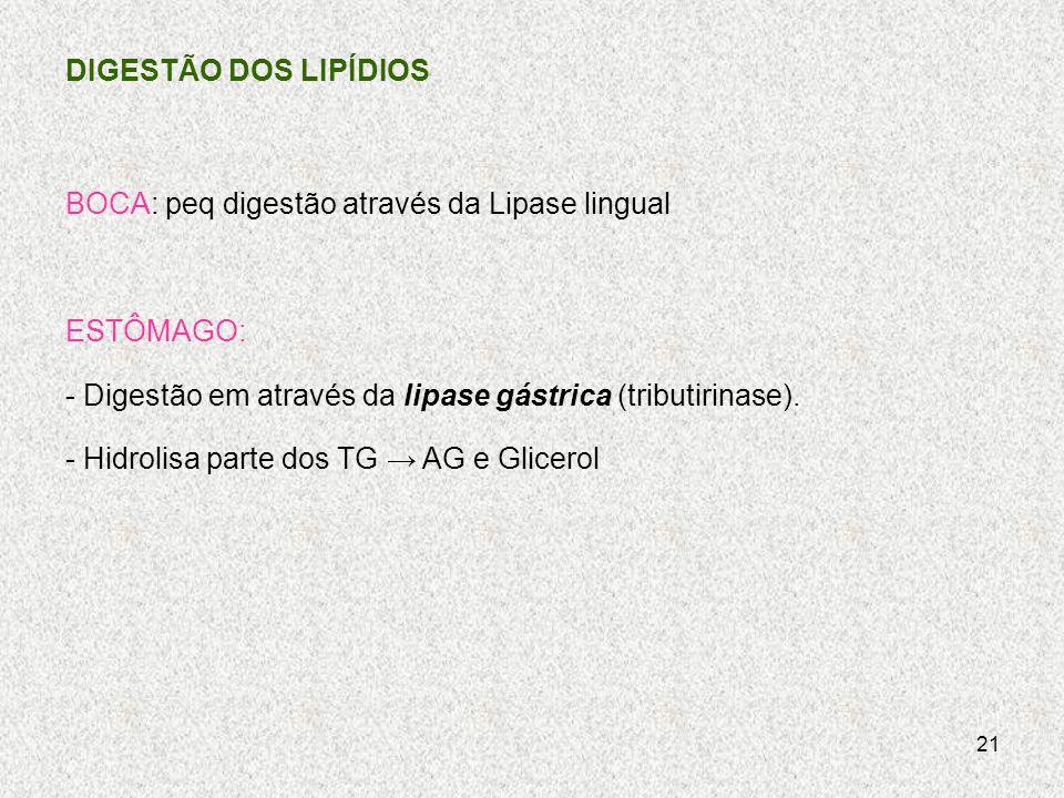 DIGESTÃO DOS LIPÍDIOS BOCA: peq digestão através da Lipase lingual. ESTÔMAGO: - Digestão em através da lipase gástrica (tributirinase).