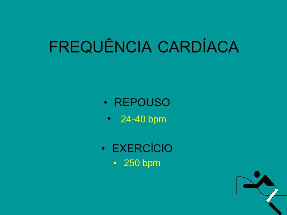 FREQUÊNCIA CARDÍACA REPOUSO 24-40 bpm EXERCÍCIO 250 bpm