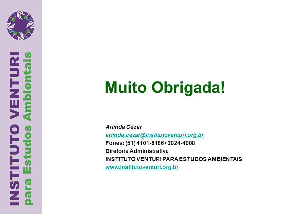 Muito Obrigada! Arlinda Cézar arlinda.cezar@institutoventuri.org.br