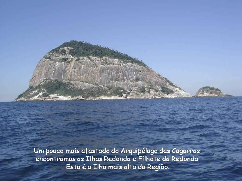 Um pouco mais afastado do Arquipélago das Cagarras,