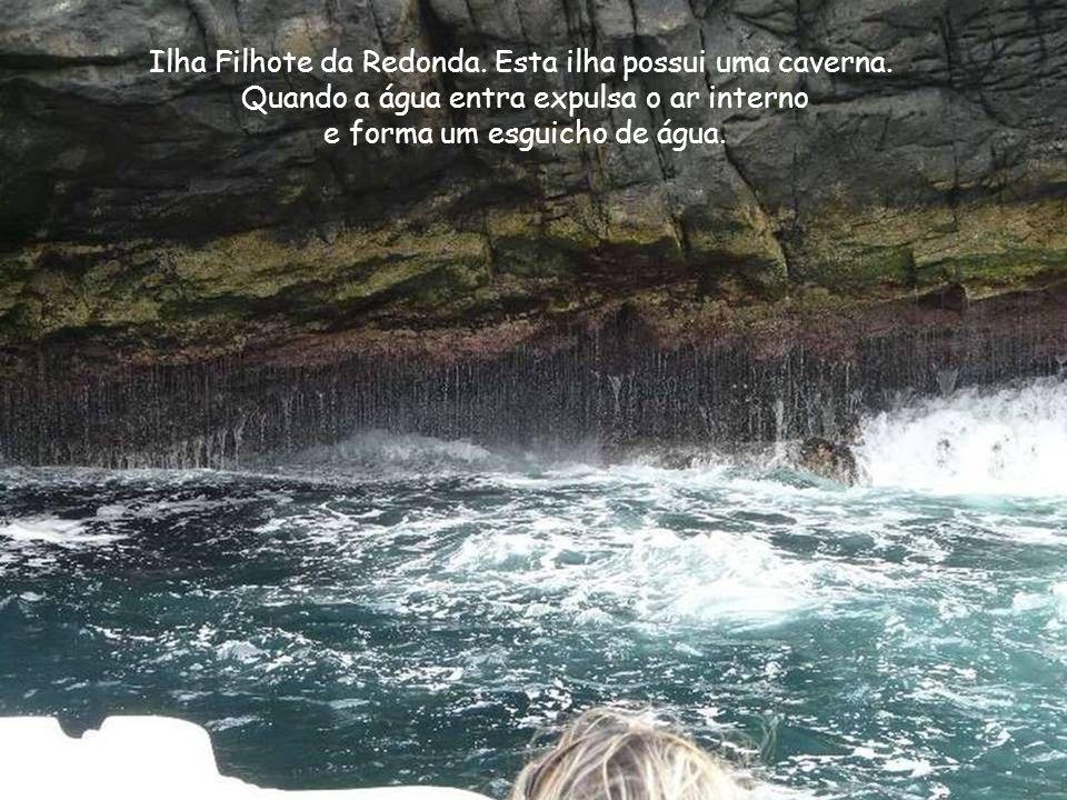 Ilha Filhote da Redonda. Esta ilha possui uma caverna.