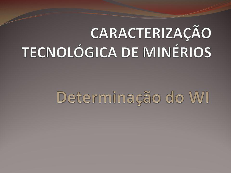 CARACTERIZAÇÃO TECNOLÓGICA DE MINÉRIOS