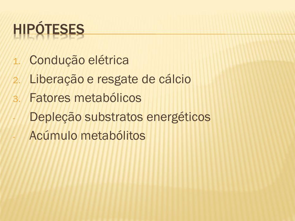 Hipóteses Condução elétrica Liberação e resgate de cálcio