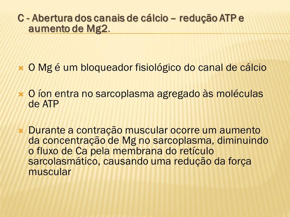 C - Abertura dos canais de cálcio – redução ATP e aumento de Mg2.