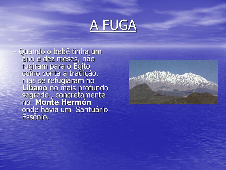 A FUGA