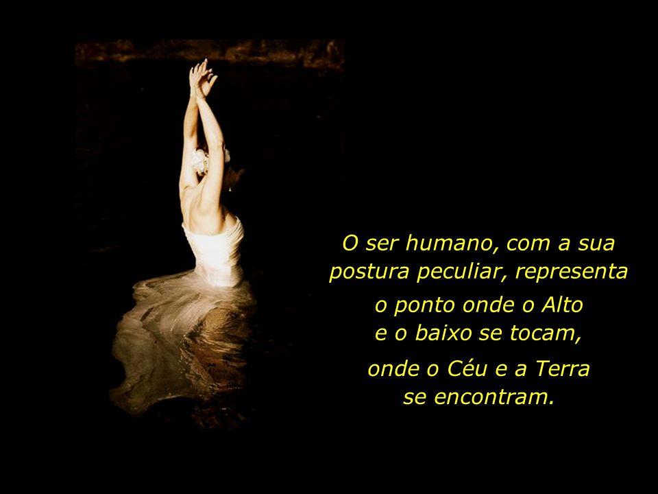 O ser humano, com a sua postura peculiar, representa