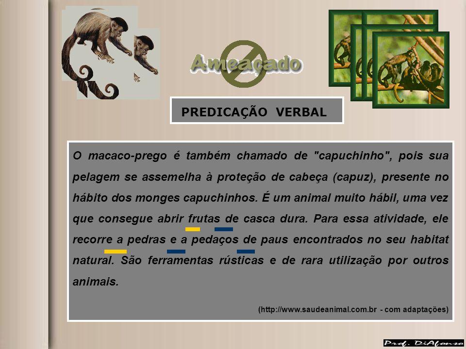 PREDICAÇÃO VERBAL