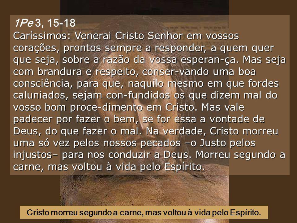Cristo morreu segundo a carne, mas voltou à vida pelo Espírito.