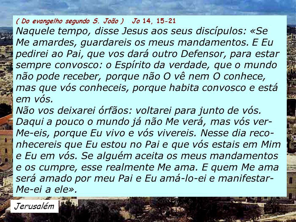 ( Do evangelho segundo S. João ) Jo 14, 15-21