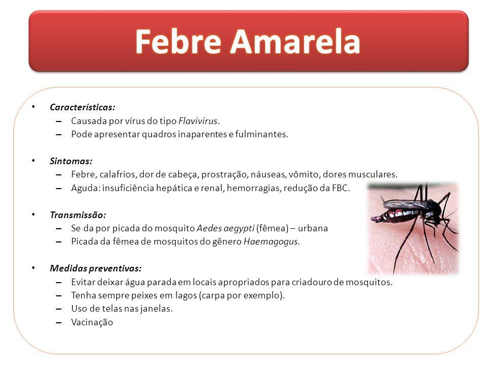 Febre Amarela Características: Causada por vírus do tipo Flavivirus.