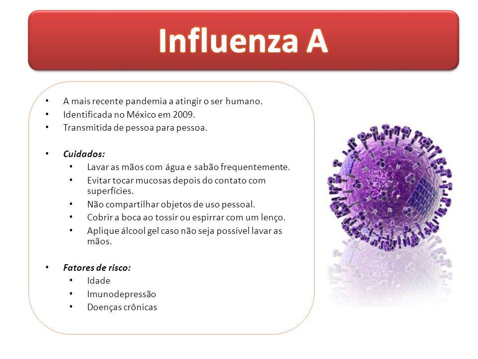 Influenza A A mais recente pandemia a atingir o ser humano.