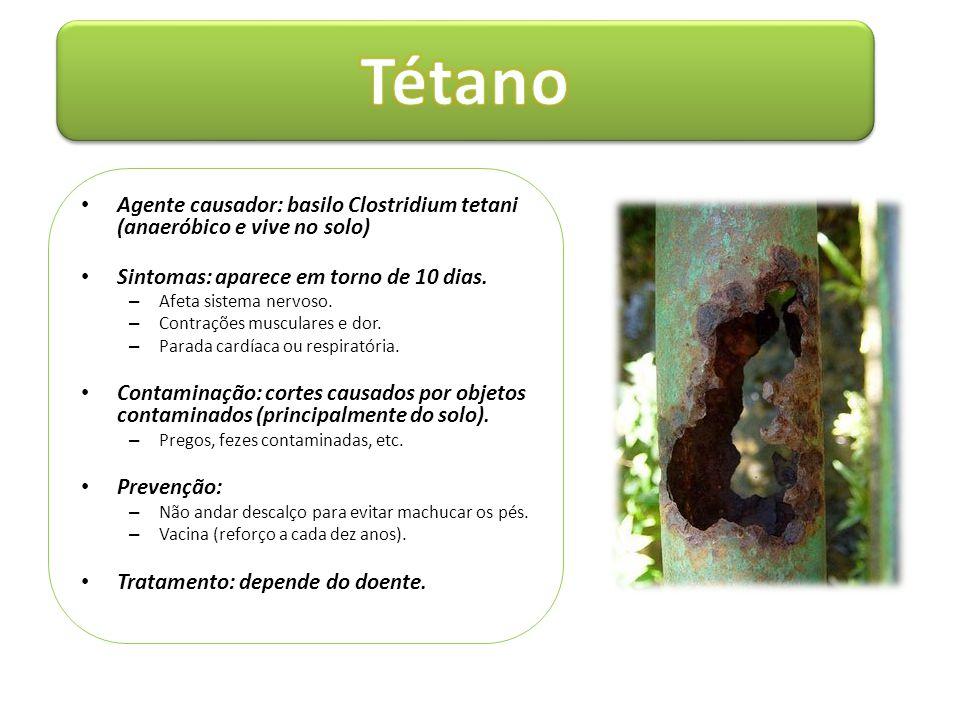 Tétano Agente causador: basilo Clostridium tetani (anaeróbico e vive no solo) Sintomas: aparece em torno de 10 dias.