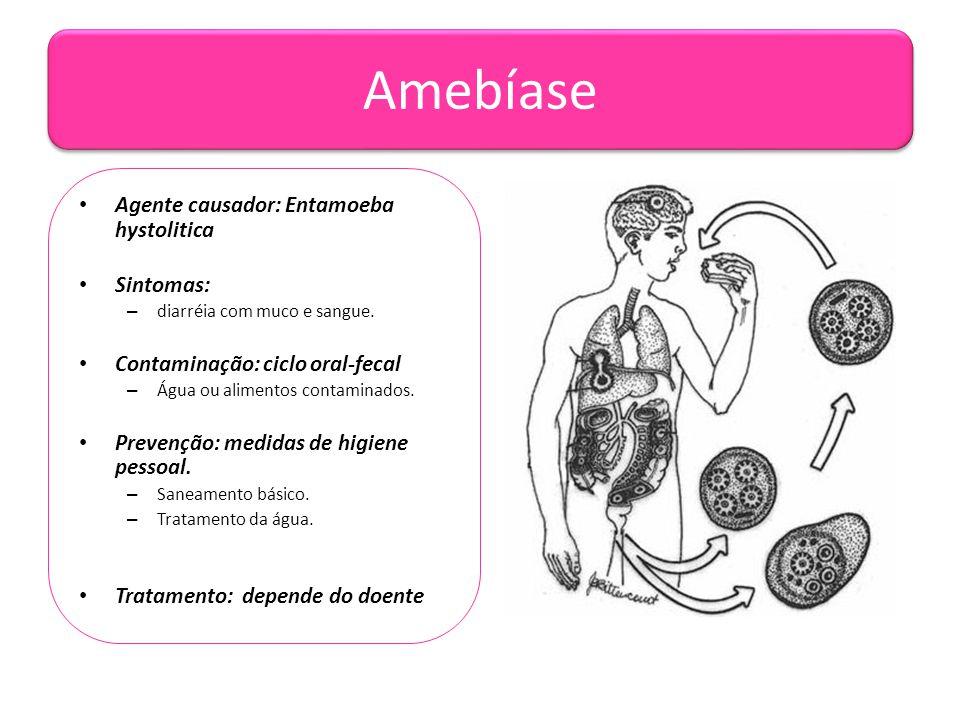 Amebíase Agente causador: Entamoeba hystolitica Sintomas: