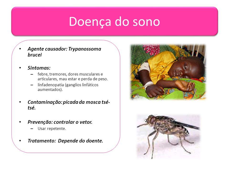 Doença do sono Agente causador: Trypanossoma brucei Sintomas: