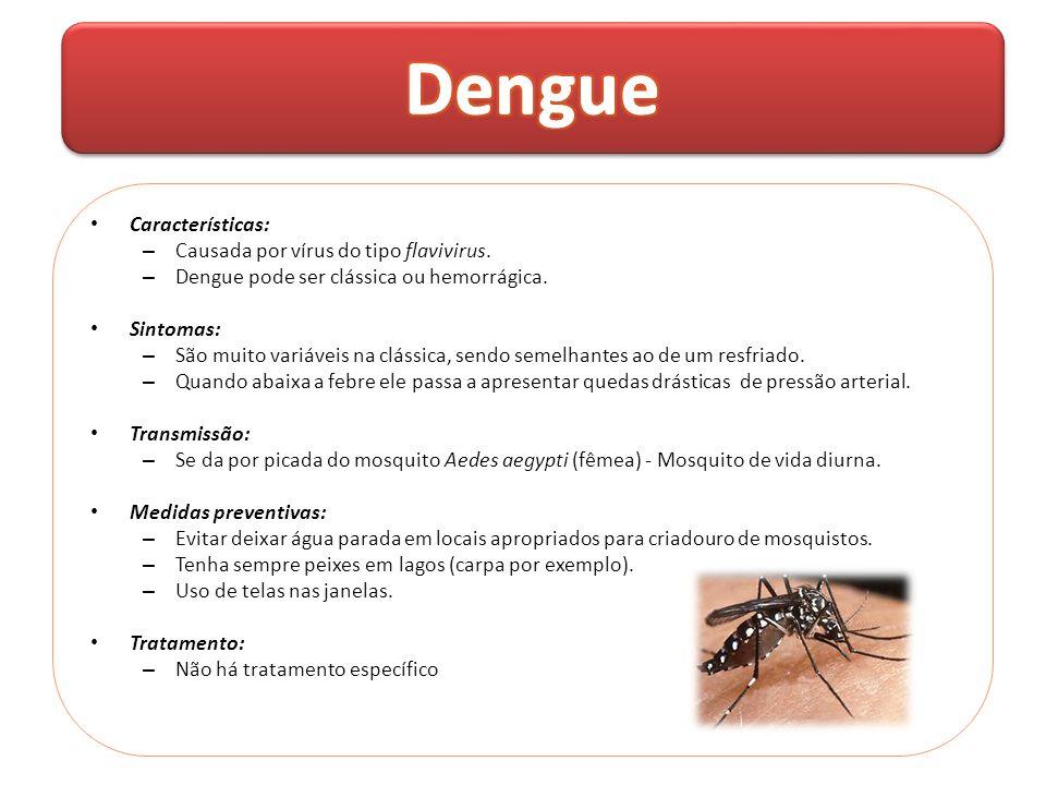 Dengue Características: Causada por vírus do tipo flavivirus.