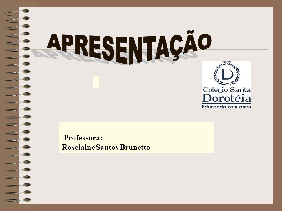 APRESENTAÇÃO Professora: Roselaine Santos Brunetto